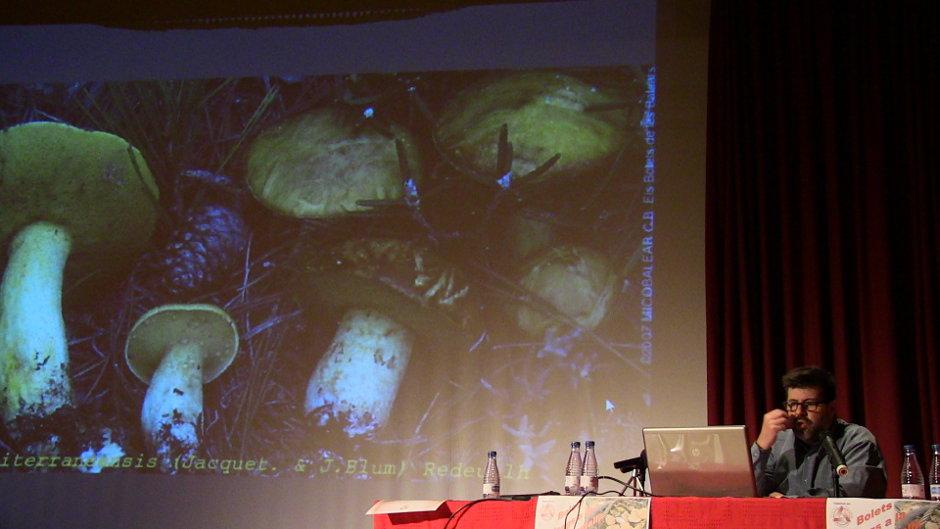 Bolets i Fongs de La Foia de Castalla: Suillus mediterraneensis