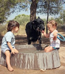 Simba jugant amb els xiquets a Castalla