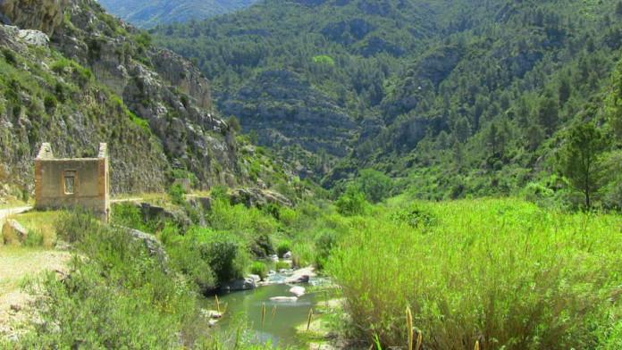 XI Ruta a Peu pel Barranc de l'Infern