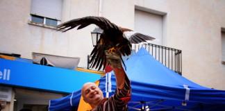Penàguila celebrà per quart any consecutiu la Fira de Santa Llúcia