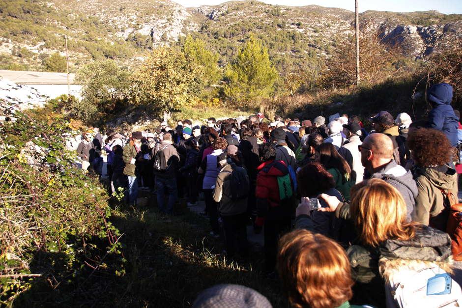 2 Jornada Botànica Plantes Mengívoles Vall Gallinera Josep Pàmies Benialí