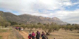Les Jornades per la Sostenibilitat continuen a Muro amb la tradicional 'Volta a les pedanies'